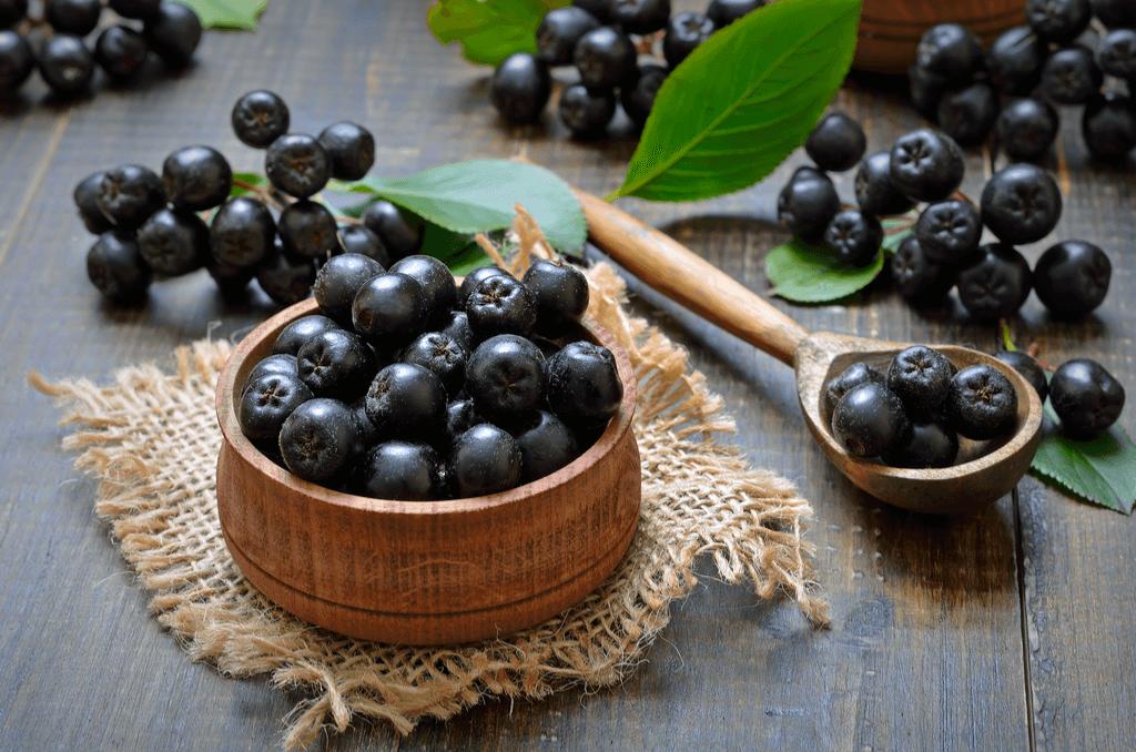Arónia čiernoplodá - čierne plody