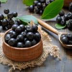 Arónia čiernoplodá - zdravé cievy, znižovanie krvného tlaku a cholesterolu, boj proti vzniku aterosklerózy