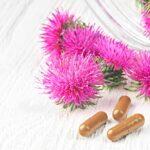 Silymarín - prírodný prostriedok pre zdravú pečeň, detoxikáciu a podporu trávenia