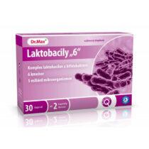 """Dr.Max Laktobacily """"6"""""""