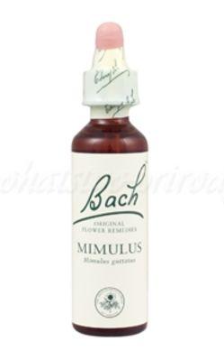 Mimulus - Čarodejka škvrnitá 20 ml - bachove kvapky