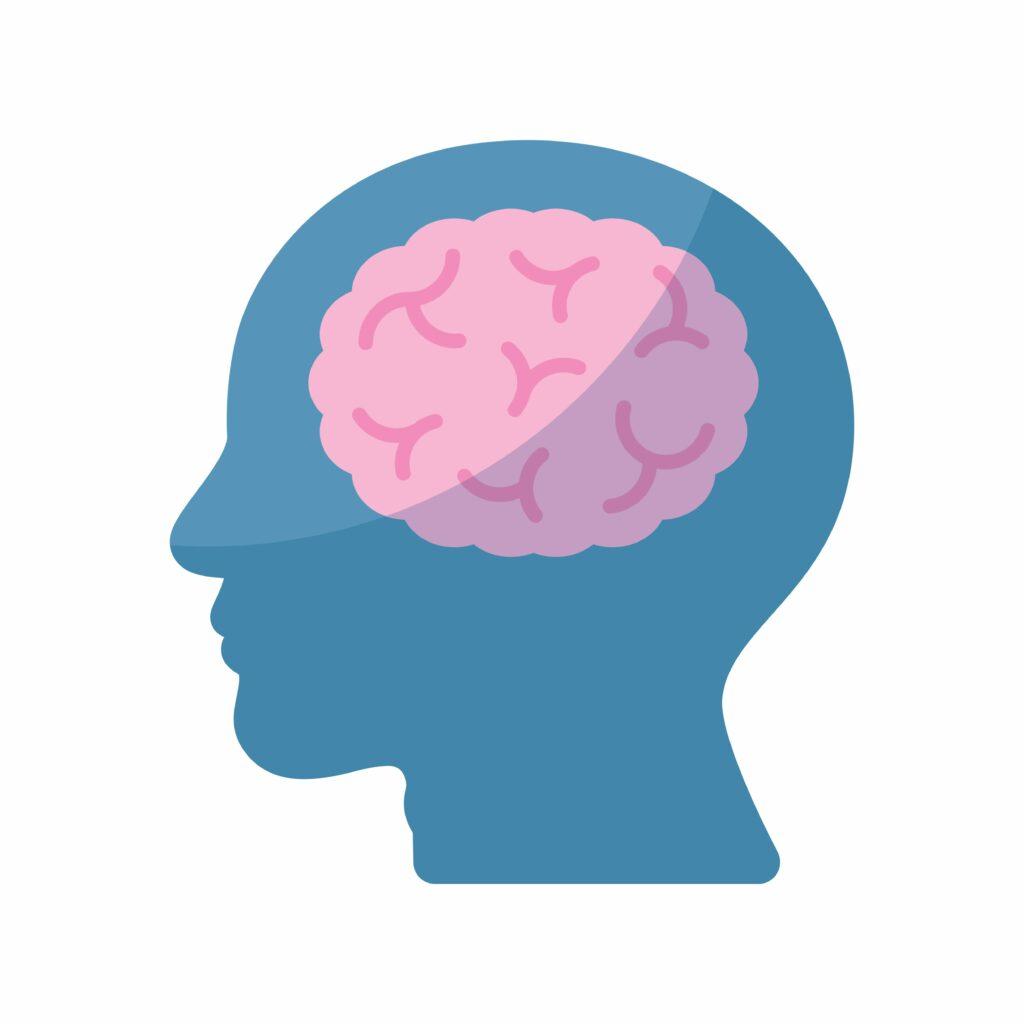 Potreba lecitínu pre zvýšenú činnosť ľudského mozgu