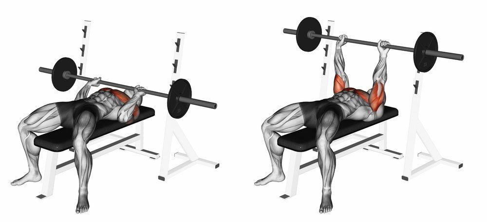 Bench press lavica - ako správne cvičiť?