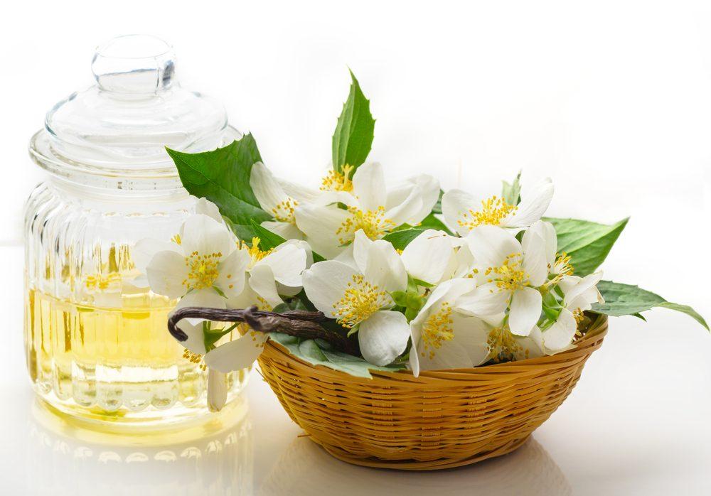 Neodolateľná vôňa vanilky v parfémovanej vode Guerlain Shalimar