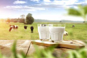 jedálniček pri mliečnej diéte