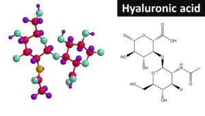 Molekula kyseliny hyalorúnovej