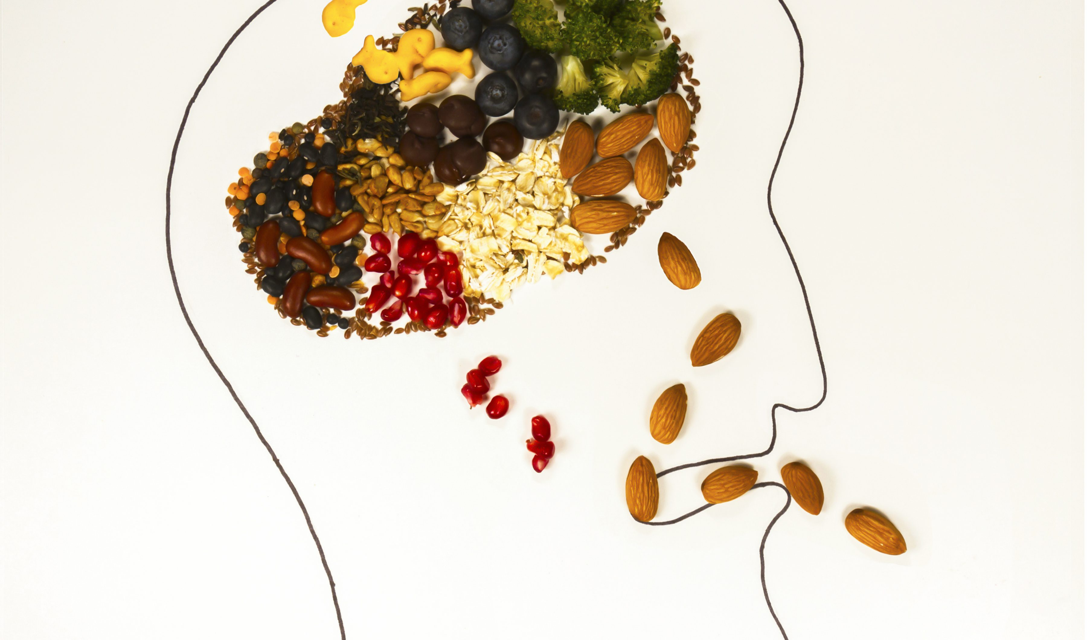 jedlo vplýva na mozog