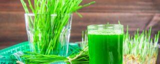 Detoxikácia organizmu zelenými potravinami