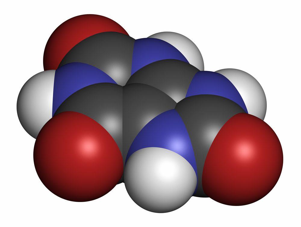 Molekula kyseliny močovej