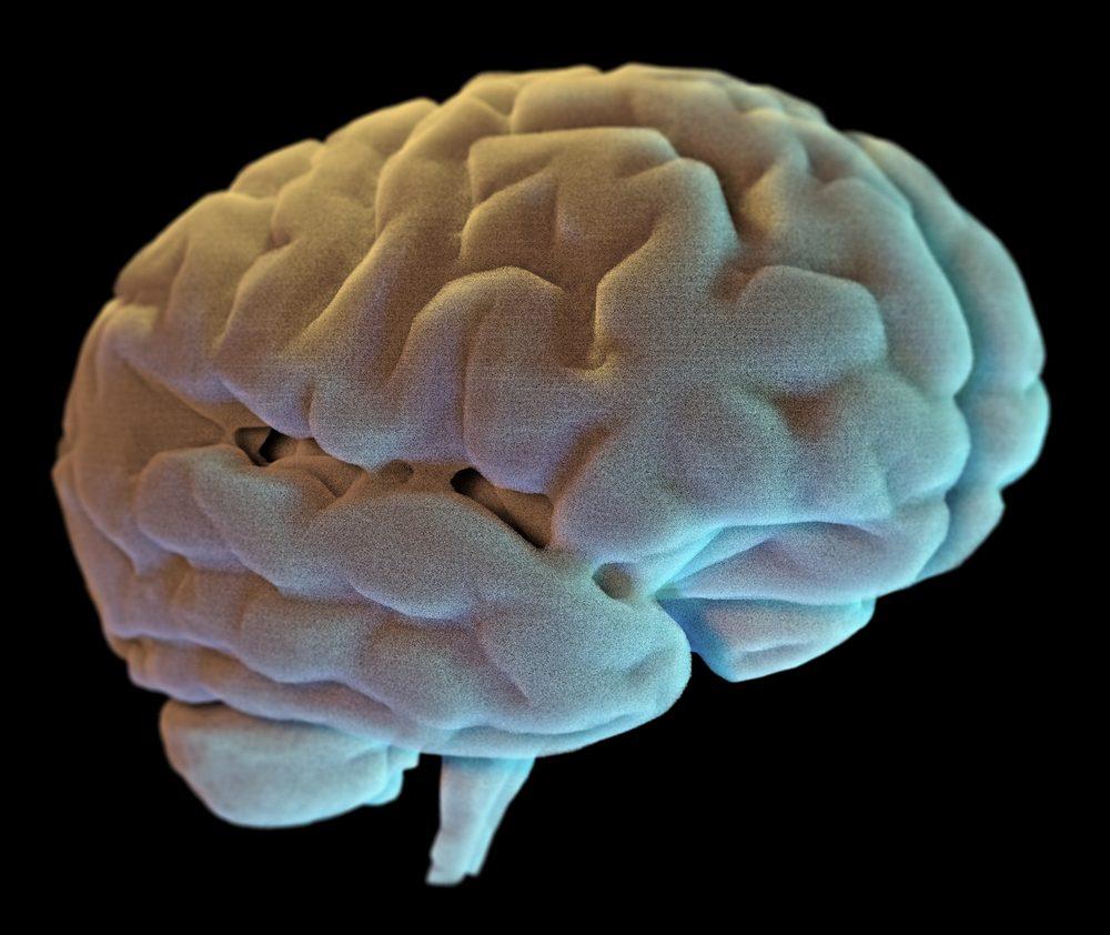 Mozog samotný nemá nervové vlákna na vedenie bolesti