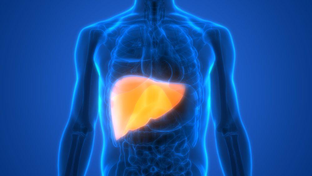 Pečeň - hnací motor detoxikácie organizmu