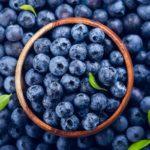 Čučoriedky - plody