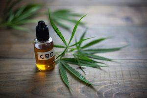 Rastlina konope a výťažok CBD