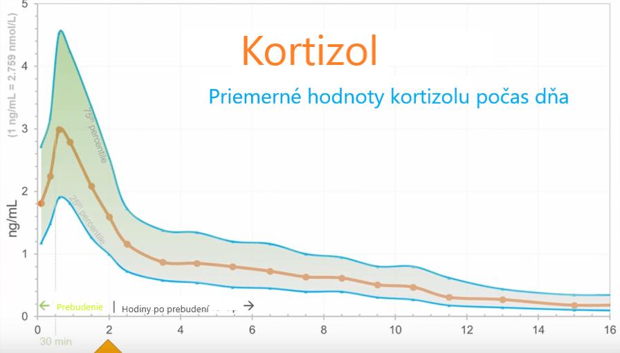 graf zobrazujúci priemerné hladiny kortizolu počas dňa