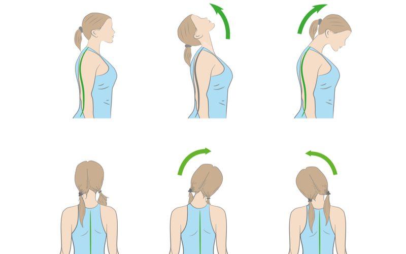schematický nákres cvikov na krčnú chrbticu